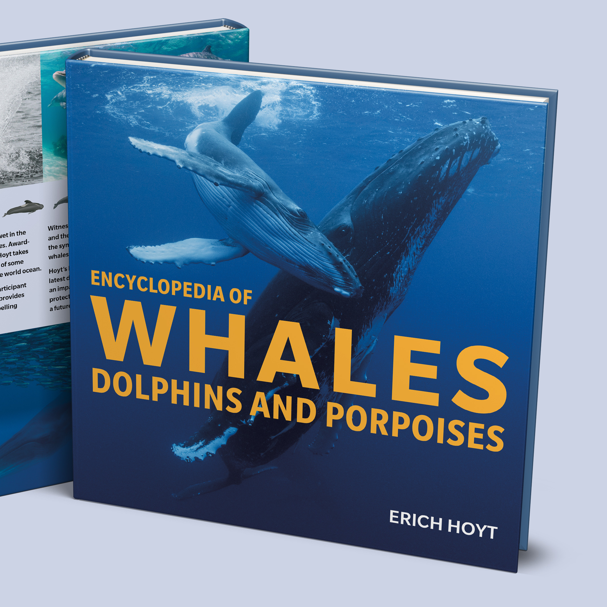 Encyclopedia of Whales
